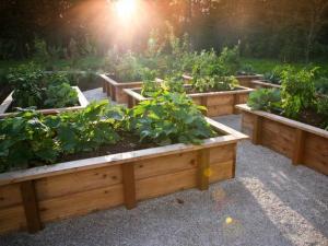 vegetable-garden-designs-raised-bed-ideas-5